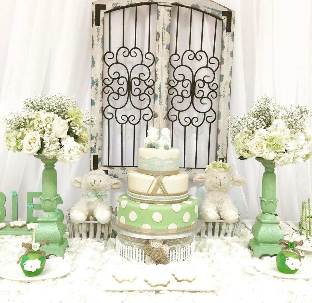 Cute twin baby shower ideas