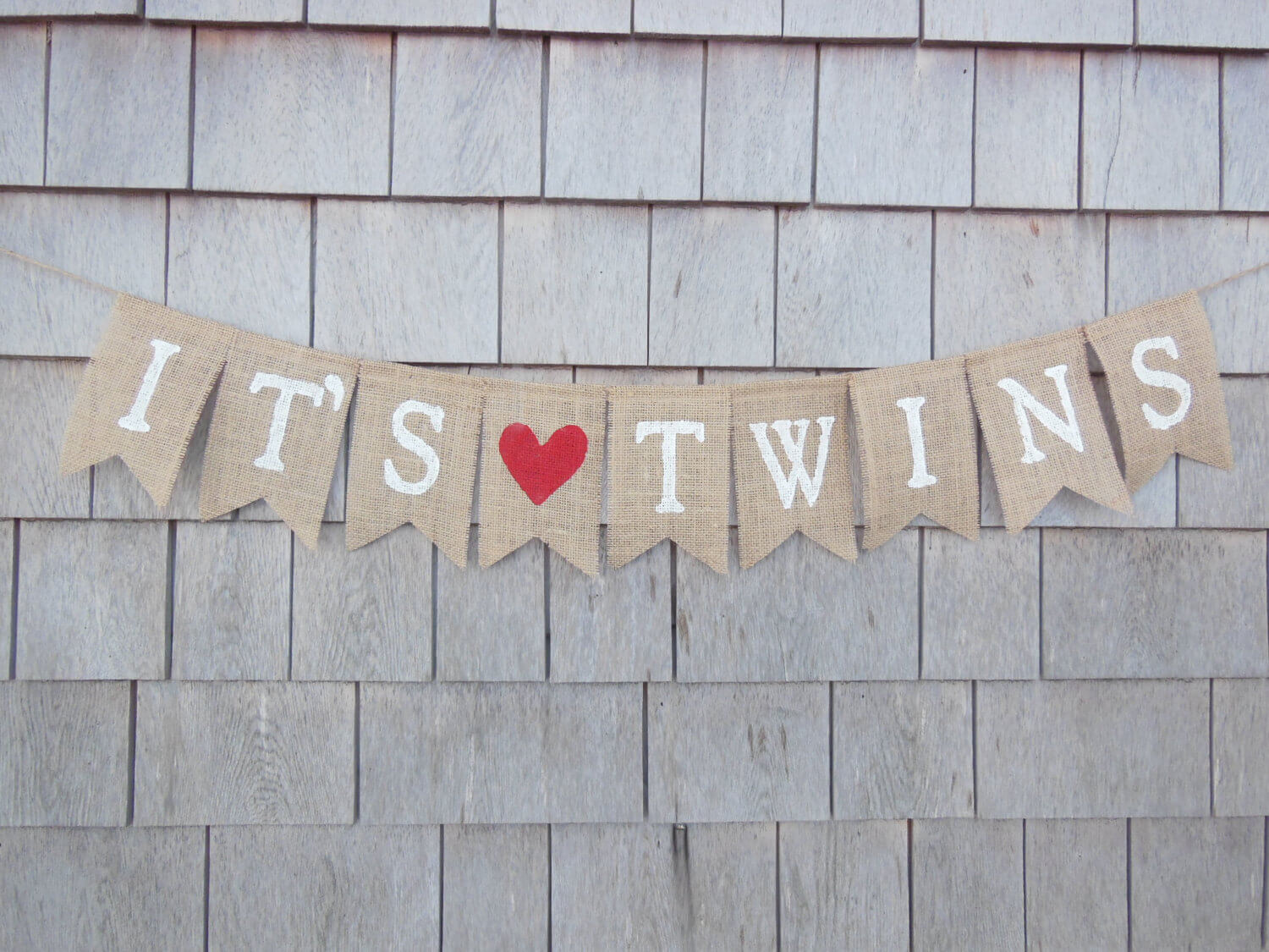 mom organize a baby shower for twins since you are expecting twins